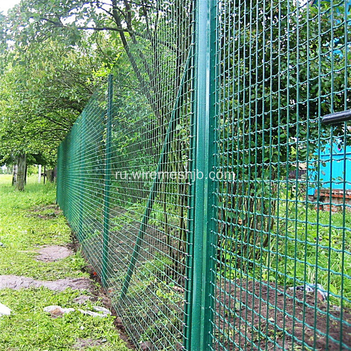 Green+PVC+Coated+Euro+Welded+Wire+Mesh+Fence