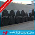 Dsep Conveyor Belt Heat Resistant Dsep100-300