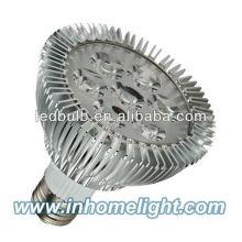 PAR 30 led spot bulb
