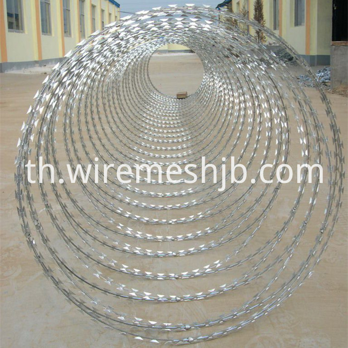 Concertina Razor Wire Fence