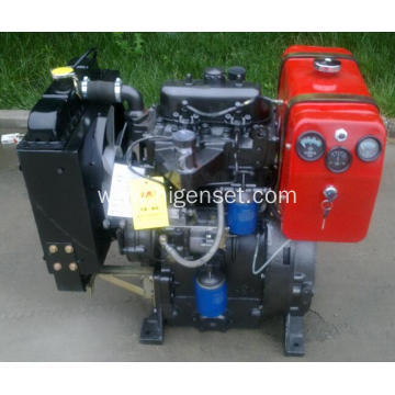 China for Diesel Engine Generator Set 2105D Ricardo two cyliner diesel engine supply to Chile Factory