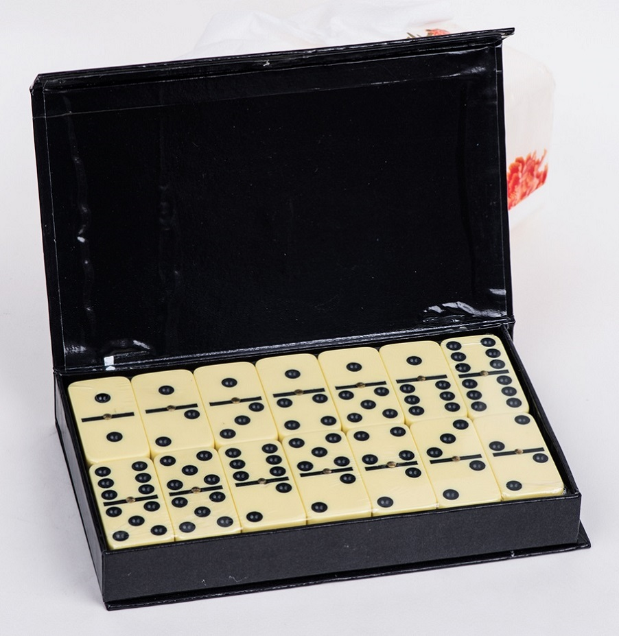 Professional Size Dominoes Game Set