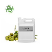 Factory supply 100% pure Olive Oil wholesale price