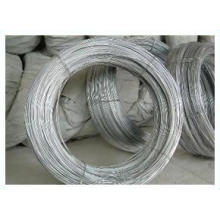 Cheap Q195 Electro Galvanized Binding Iron Wire