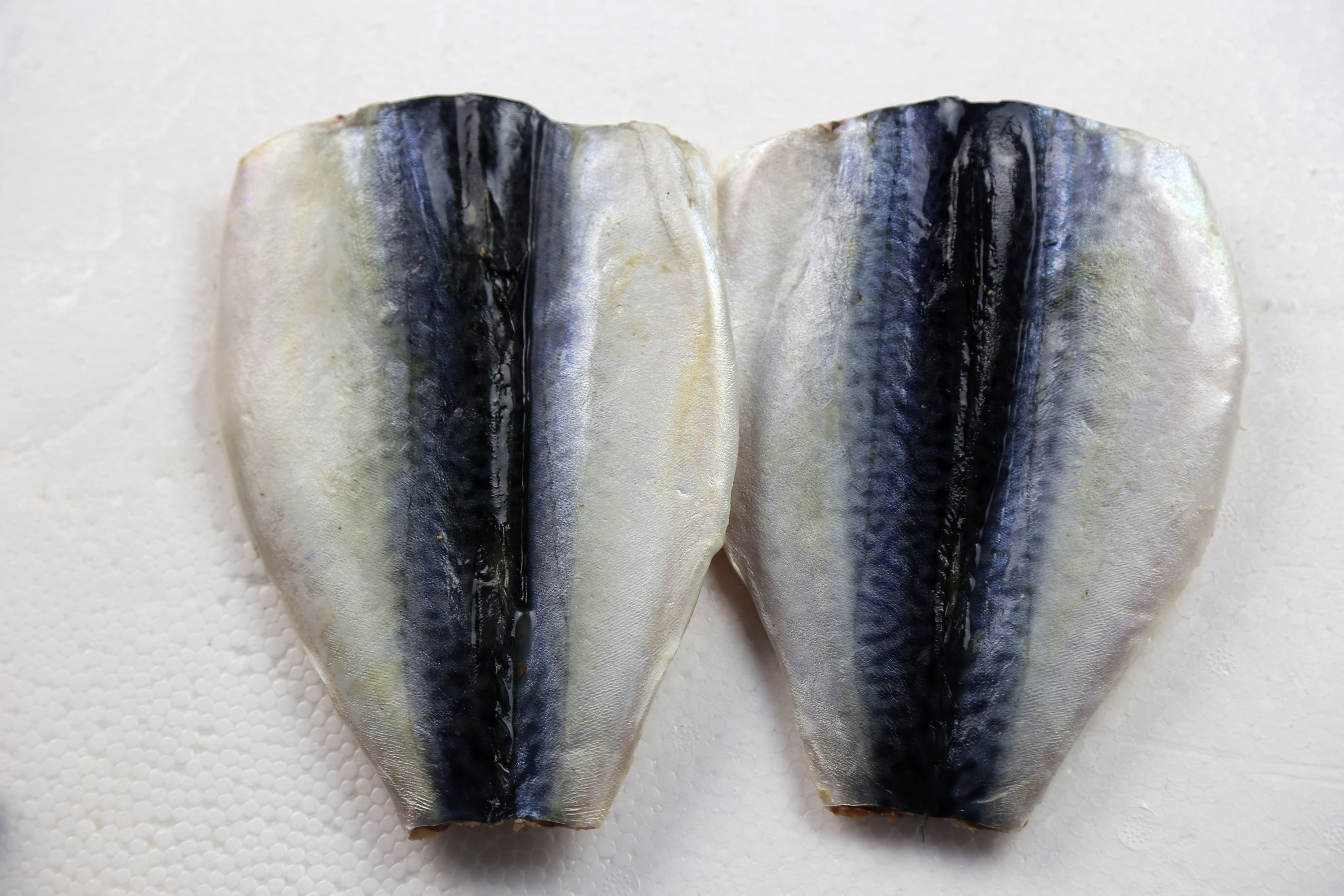 Mackerel Butterfly Fillet in Good Quality