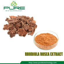 Rhodiola Rosea Extract Powder 3%-10% Salidroside