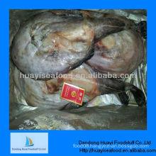 Frozen high quality monkfish