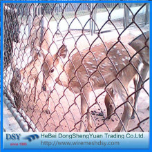 Security Chain Link Mesh Fence for Sale