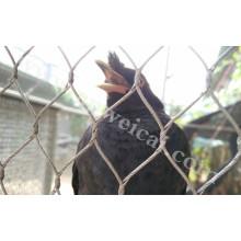 SUS304 304L SUS316 Bird Netting Mesh