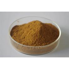Polygonum Multiflorum Thunb Extract