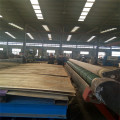 Continuous Roller Dryer SST Mesh Belt Dryer