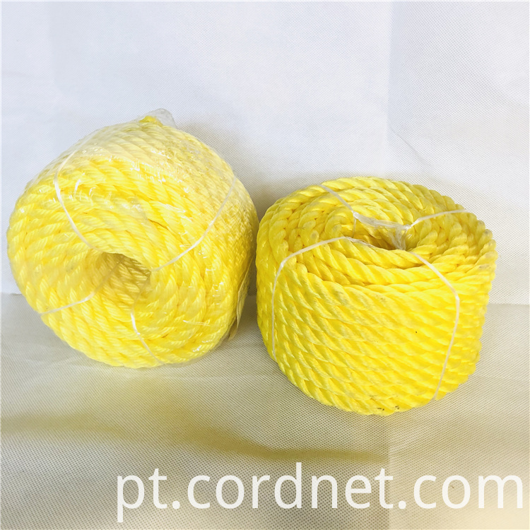 Pp Twisted Rope 2