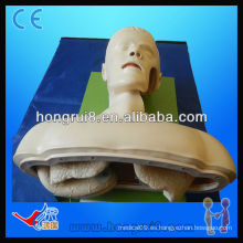 Maniquí de Entrenamiento de Intubación Avanzada de Vía Aérea ISO