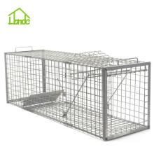 Best Cage To Trap Wild Hogs