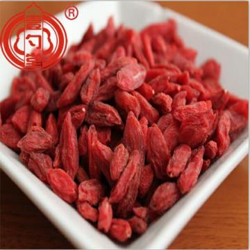 Les fruits de Goji baies riches en nutriments en gros