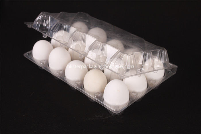 Plastic Egg Container