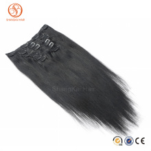 100% Human Brazilian Smooth Silky Straight Clip In Remy Hair Extension