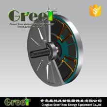 48/120/220/240В тигельные генератор для вертикальной оси ветра турбины использования