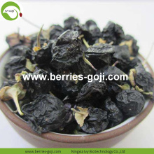 Pasokan Pabrik Nutrisi Natural Black Goji Berries kering
