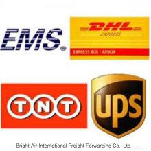 Ночная посылка доставки доставки DHL ИБП Экспресс из Китая в Аргентину, Перу