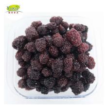 Wholesale bulk distribute IQF Frozen blackberry