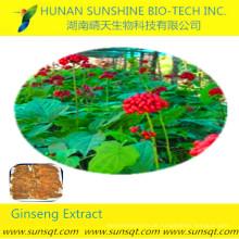 weltweit meistverkauftes Produkt CAS: 51542-56-4 Ginsenoside Re