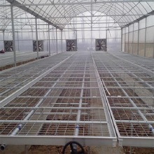 Best quality and factory for Greenhouse Seedling Nursery Bed Greenhouse Benches Grow Tray Ebb and Flow Table supply to Vanuatu Wholesale