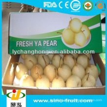 Fresh Pear from China