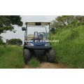 CE 48V electric type cheap golf cart for sale with cargo bed