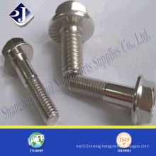 High Strength Ss 304/316 Hex Flange Bolt