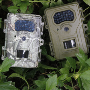 Trail Game Camera med 2,4 tums skärmdisplay