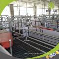 Cajón de partos en venta Cerdo equipos de siembra Cajón de siembra