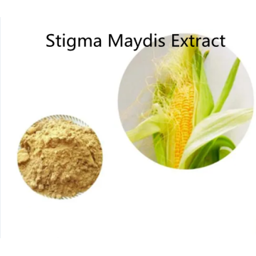 Buy online active ingredients Stigma Maydis Extract powder
