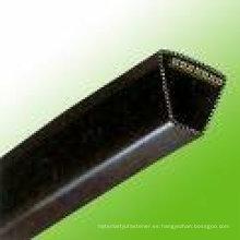 Cinturón verde perforado V