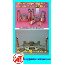 Permanent-Magnet-verschiedene Formen