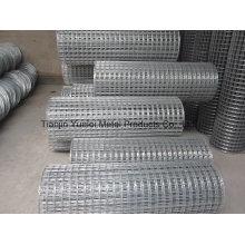 Construction à chaud galvanisé à chaud Maille métallisée soudée / Galvanisé en maille carrée / Galvanisé / PVC moulé soudé