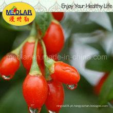 Nêspera secada Goji chinês Wolfberry