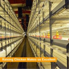 Отличный дизайн Автоматическая клетка цыпленка слоя для продажи в Philipinas