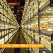 Automatische Broiler Hühnerfarmkäfig zum Verkauf in Pilipinas