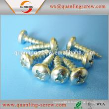 Chine Wholesale importation inox à tête fraisée vis aggloméré tête