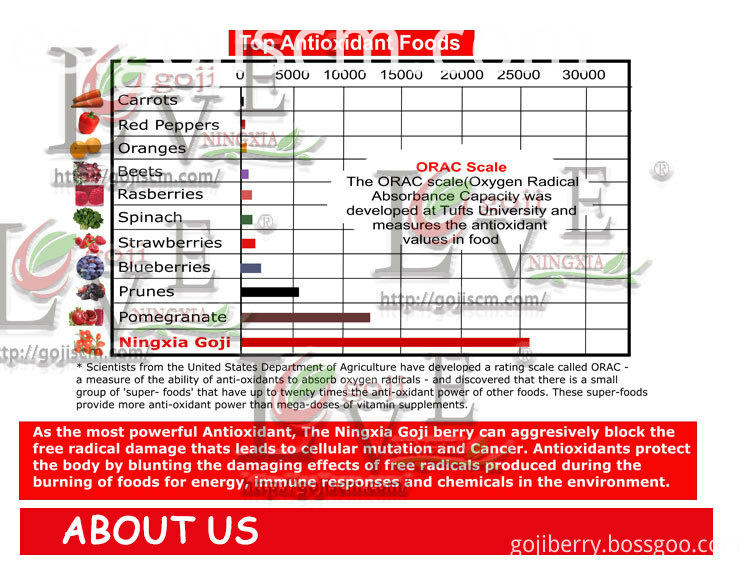 GOJI BERRY Factory Direct Supply advantages