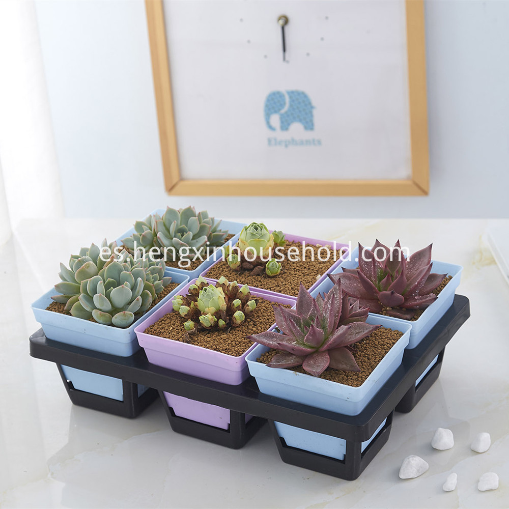 plastic Carrying Trays