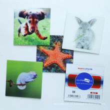 Personalizar imanes de nevera 3D de alta calidad