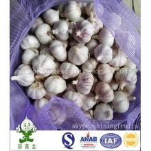 20 Kg Mesh Bag Alho Branco Normal 4.5cm De Jinxiang
