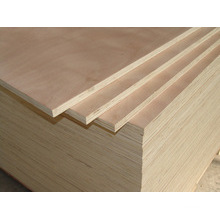 High Quality Poplar Plywood/Commercial Plywood