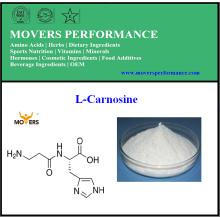 L-Carnosine de haute qualité pure de vente chaude naturelle