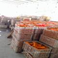 Китай свежих продуктов в цене морковь 2017