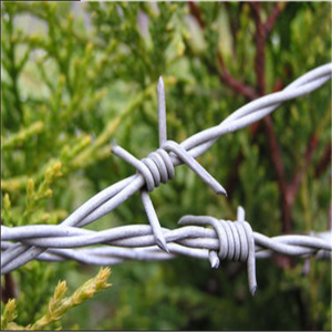 Galvanized High Tensile Barbed Wire
