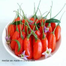 Органические Нинся Красный Ягоды Годжи --100% Супер Сырья