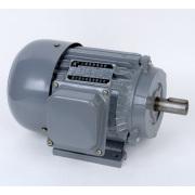 Motor eléctrico de la serie de Y